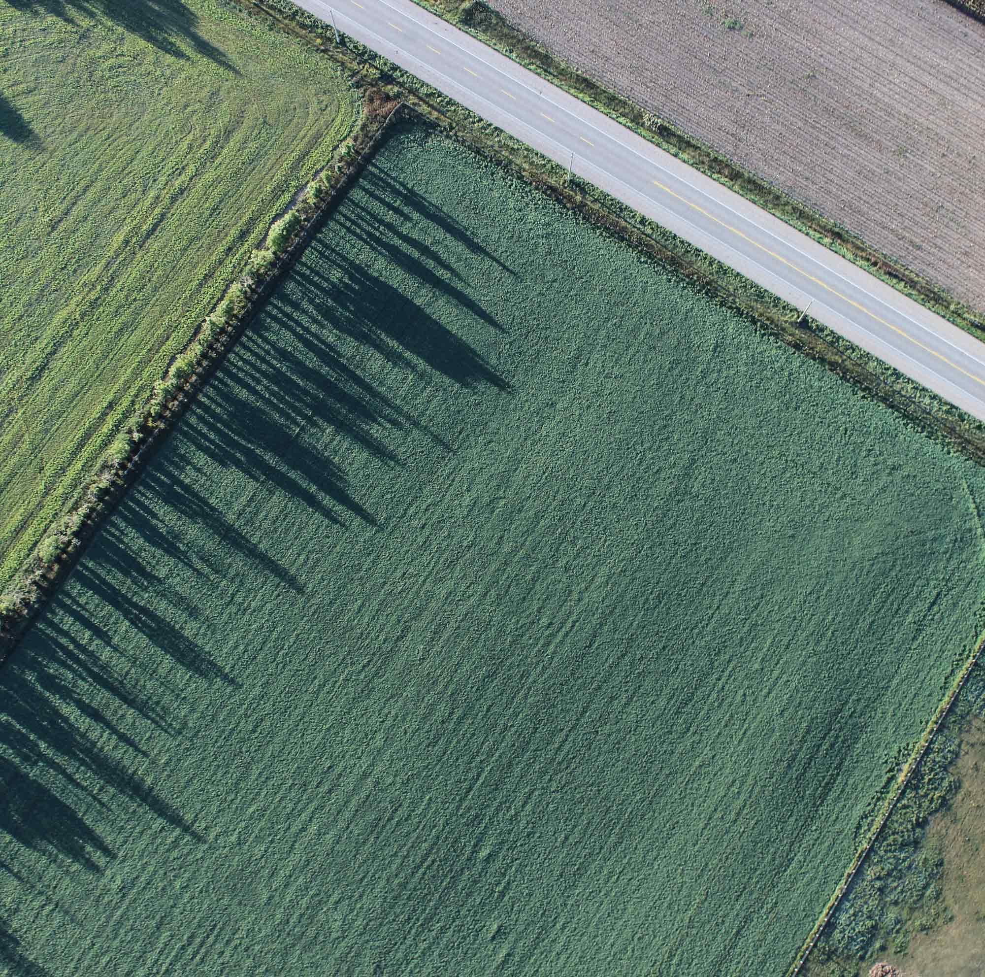 Una vista aérea de un campo. Una carretera atraviesa la esquina superior derecha.